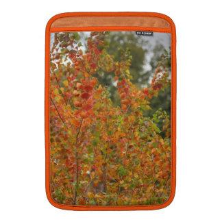 Autumn Leaves Macbook Air Sleeve