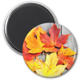 Autumn Leaves 2 Inch Round Magnet