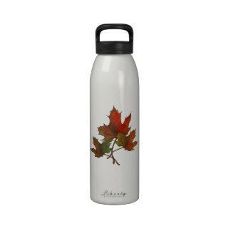 Autumn Leaves: Maple: Hand Drawn: Nature Reusable Water Bottles