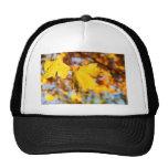 Autumn Leaves Mesh Hat