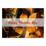 Autumn Leaves Mothers Day card