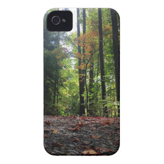 Autumn Leaves on a Dirt Road iPhone 4 Case