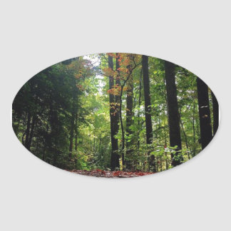 Autumn Leaves on a Dirt Road Oval Sticker