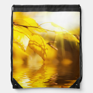 Autumn leaves on a sunny day drawstring bag