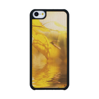 Autumn leaves on a sunny day carved® maple iPhone 5C slim case