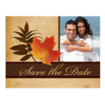 Autumn Leaves on Aged Paper Photo Save the Date Postcard