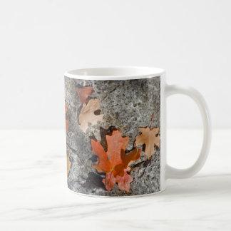 Autumn Leaves on Limestone Classic White Coffee Mug