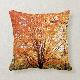 Autumn Leaves on Maple Tree Throw Pillows