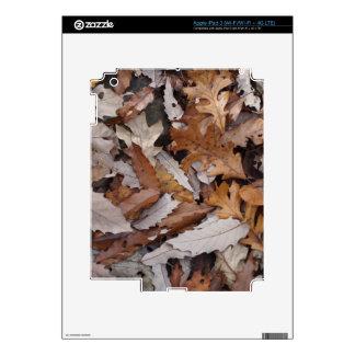 Autumn Leaves On The Ground iPad 3 Skin