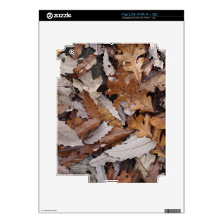 Autumn Leaves On The Ground Skin For iPad 2
