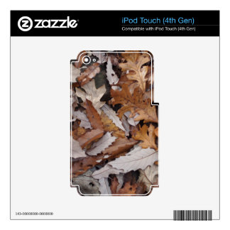 Autumn Leaves On The Ground iPod Touch 4G Skin