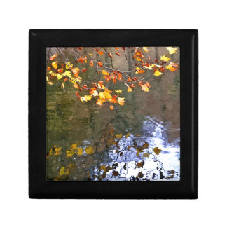 Autumn leaves on the pond gift box