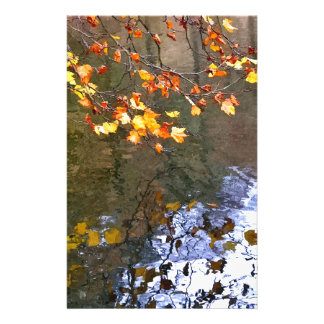 Autumn leaves on the pond stationery