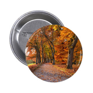 Autumn leaves on the road 2 inch round button
