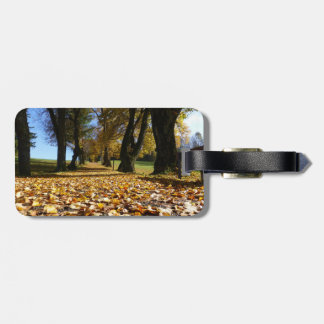 Autumn leaves on the road luggage tag
