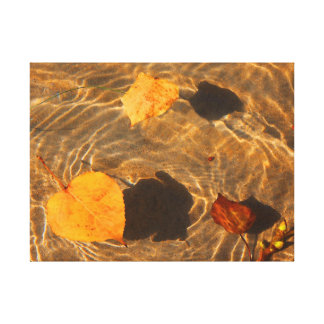 Autumn Leaves On Water Canvas by RoseWrites