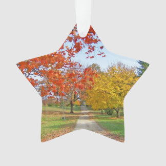 Autumn Leaves Ornament