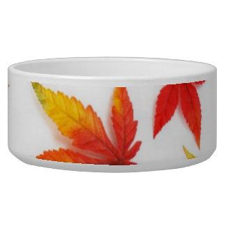 Autumn Leaves Pet Bowl