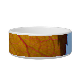 Autumn Leaves Cat Water Bowl