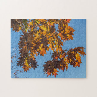 Autumn leaves photo puzzle