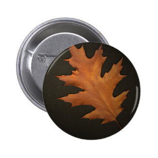 Autumn Leaves Pinback Button