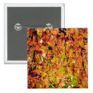 Autumn leaves pinback button