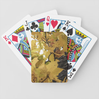 Autumn Leaves Card Deck
