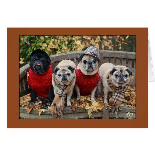 Autumn Leaves Pug Card