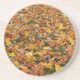 Autumn Leaves Sandstone Coaster