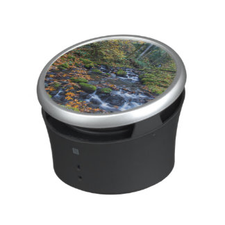 Autumn Leaves Scattered Along Gorton Creek Bluetooth Speaker