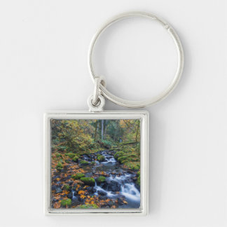 Autumn Leaves Scattered Along Gorton Creek Keychain