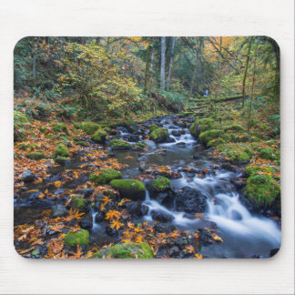 Autumn Leaves Scattered Along Gorton Creek Mouse Pad