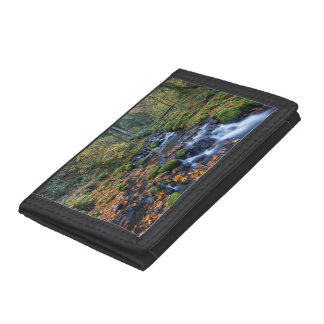 Autumn Leaves Scattered Along Gorton Creek Trifold Wallet