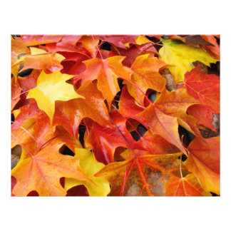 Autumn Leaves Scrapbooking paper Fall Leaves Letterhead