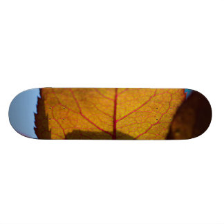 Autumn Leaves Skateboard Decks