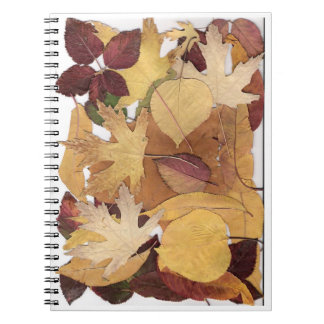 Autumn Leaves Spiral Note Book