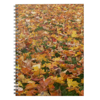 Autumn Leaves Spiral Notebooks