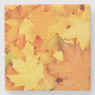 Autumn Leaves Stone Coaster