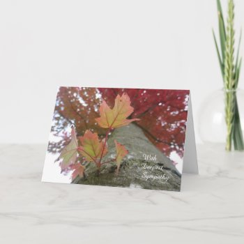Autumn Leaves Sympathy Card