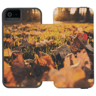Autumn leaves wallet case for iPhone SE/5/5s