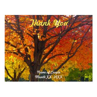Autumn Leaves Wedding Thank You Postcard