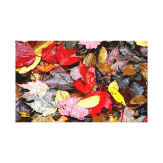 Autumn Leaves Wrapped Canvas