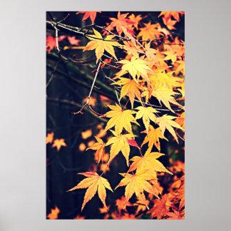 Autumn Life Poster
