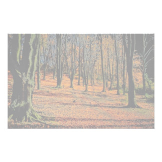 Autumn light from the Forest Customized Stationery