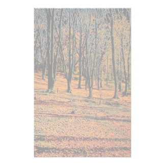 Autumn light from the Forest Stationery Design