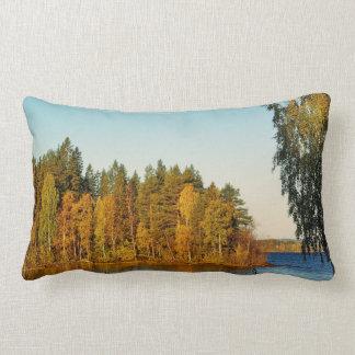 Autumn Light Pillows
