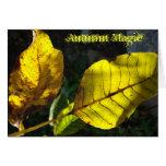 autumn magic wenskaarten