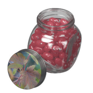 """Autumn Maple"" design Jelly Bean Glass Jar"