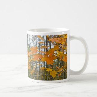Autumn Maple Foliage Classic White Coffee Mug