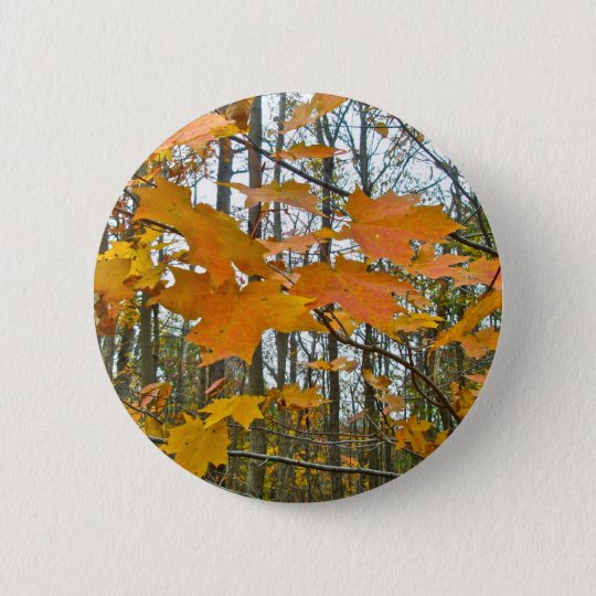 Autumn Maple Foliage Pinback Button